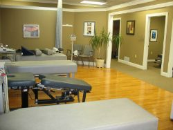 The therapy area